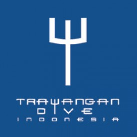 Profile picture for user Trawangan Dive