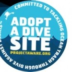 Curaçao Dive Centers Take Action Against Marine Debris
